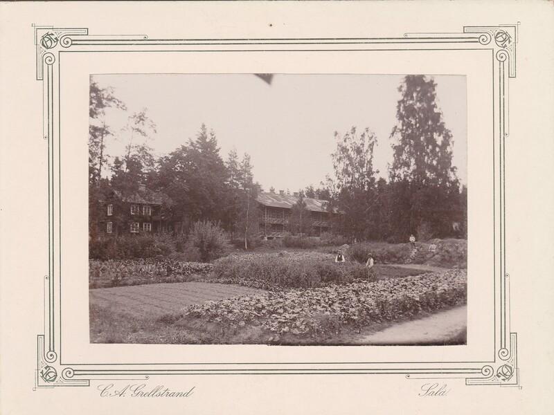 Sätra Brunn. Skogsbo. T. v. Hofbergs. Årtal 1890-t. Storlek 220x160 mm. T.v. Hofbergs.  Skogsbo Sätra omkring 1890. Foto..jpg