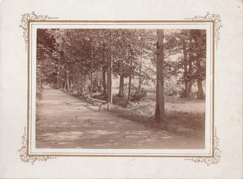 Brudallén. Årtal 1890-t. Storlek 220x160 mm..jpg
