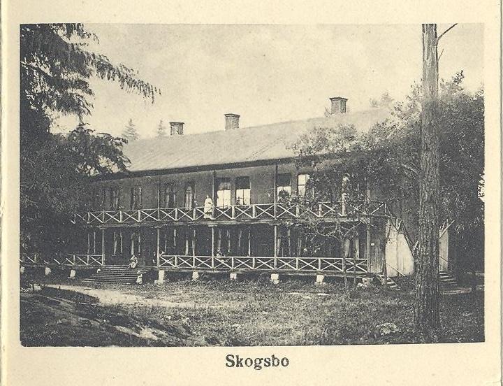 Skogsbo.jpg