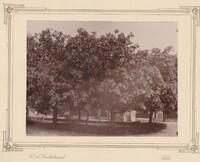 Sätra Brunn. Brunnsgården. Årtal 1890-talet. Storlek 220x160 mm. Foto..jpg