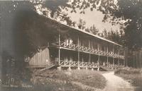 Skogsbo. 1920-tal. Ej postg Asida.jpg