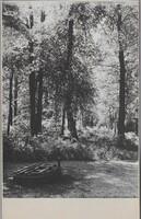 Sätra Brunn. Brudällan. Ca 1920. Foto..jpg